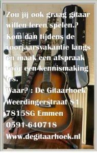 gitaarles-maart-2020